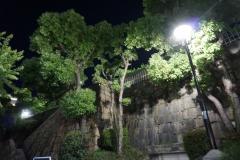 夜の花隈公園
