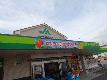 Okinawa 2013 3-03